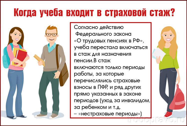 Обучение и трудовой стаж
