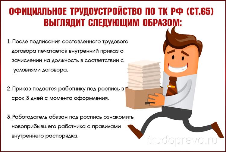 Официальное трудоустройство по ТК РФ