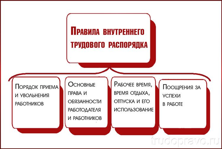 Основные пункты распорядка
