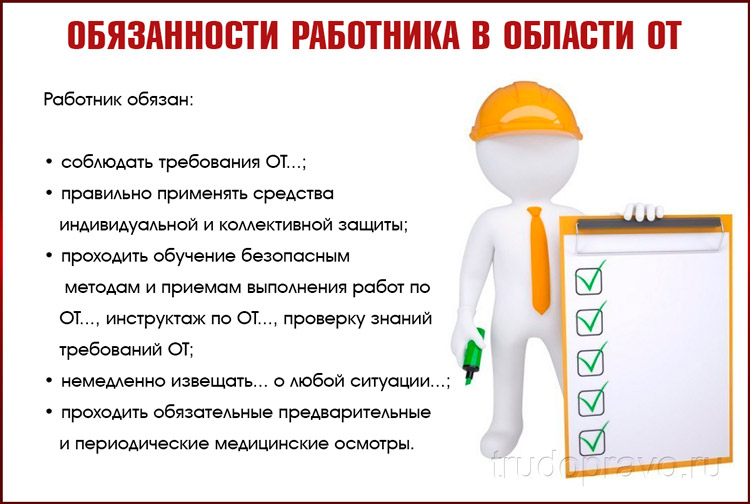 Обязанности сотрудников